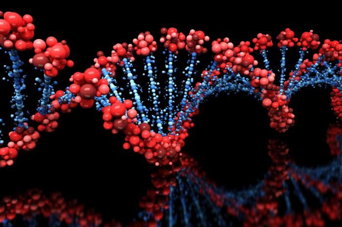 Νέα γονιδιακή θεραπεία για τη μεσογειακή αναιμία